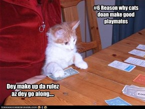 #6 Reason why cats doan make good playmates