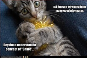 #8 Reason why cats doan make good playmates