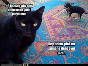 #9 Reason why cats doan make good playmates