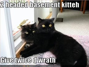 2 headed basement kitteh  Give twice d wrath