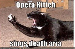 Opera Kitteh  sings death aria