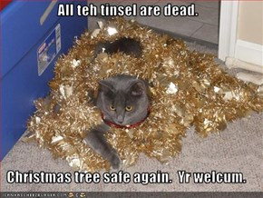 All teh tinsel are dead.  Christmas tree safe again.  Yr welcum.