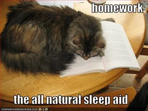 homework  the all natural sleep aid