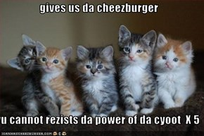 gives us da cheezburger  yu cannot rezists da power of da cyoot  X 5