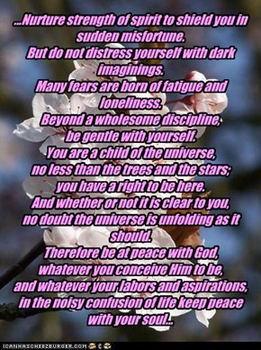 "Excerpt from ""Desiderata""    Max Ehrmann"