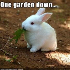 One garden down...