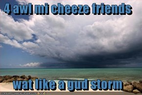 4 awl mi cheeze friends  wat like a gud storm