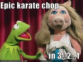 Epic karate chop   in 3...2...1