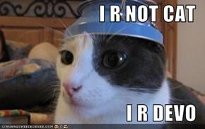 I R NOT CAT  I R DEVO