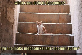 whut r you doin in Basemint?  tryin to make mechanikal she-hoomin again?