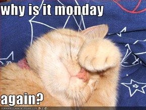why is it monday  again?