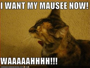 I WANT MY MAUSEE NOW!  WAAAAAHHHH!!!