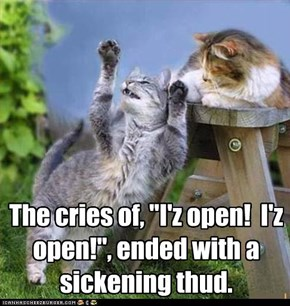 "The cries of, ""I'z open!  I'z open!"", ended with a sickening thud."