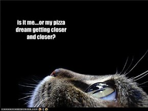 is it me....or my pizza dream getting closer and closer?