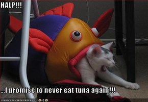 HALP!!!  ...I promise to never eat tuna again!!!