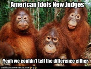 American Idols New Judges