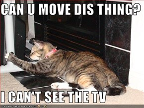 CAN U MOVE DIS THING?  I CAN'T SEE THE TV