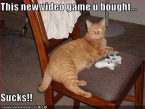This new video game u bought...  Sucks!!