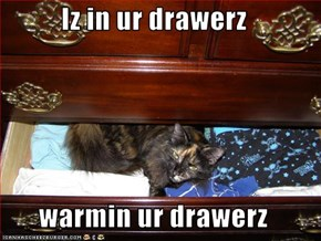 Iz in ur drawerz  warmin ur drawerz