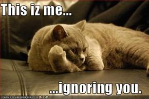 This iz me...  ...ignoring you.
