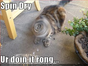 Spin Dry  Ur doin it rong...