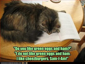 """Do you like green eggs and ham?"" ""I do not like green eggs and ham. I like cheezburgers, Sam-I-Am!"""
