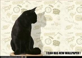I CAN HAS NEW WALLPAPER !