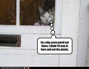 Its a big scary world out there. I think I'll stay in here and eat the plants.