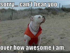 sorry... can't hear yoo  over how awesome i am.