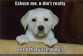 Eskuze me, u din't really  need that vase, did u?