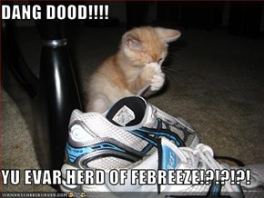 DANG DOOD!!!!  YU EVAR HERD OF FEBREEZE!?!?!?!