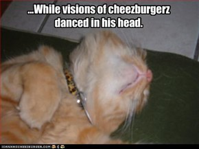 ...While visions of cheezburgerz  danced in his head.