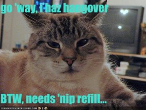 go 'way, i haz hangover  BTW, needs 'nip refill...