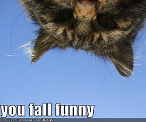 you fall funny