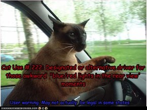 "Cat Use # 222: Designated or alternative driver for those awkward  ""blue/red lights in the rear view' moments"