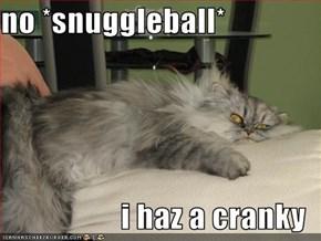 no *snuggleball*  i haz a cranky