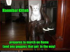 Hannibal Kitteh
