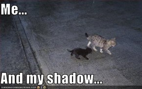 Me...  And my shadow...