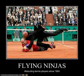 FLYING NINJAS