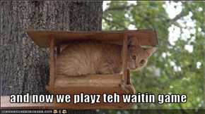 and now we playz teh waitin game