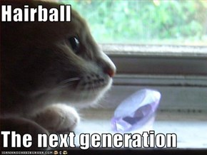 Hairball  The next generation