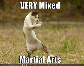 VERY Mixed  Martial Arts