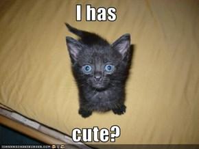 I has  cute?