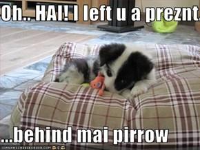 Oh.. HAI! I left u a preznt...  ...behind mai pirrow