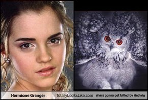 Hermione Granger Totally Looks Like she's gonna get killed by Hedwig