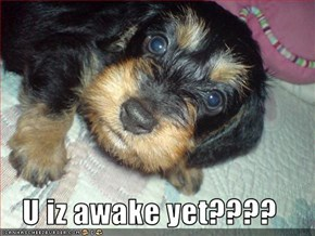 U iz awake yet????