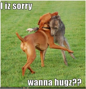 I iz sorry  wanna hugz??