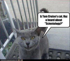 "Iz Tom Cruise's cat. Haz u heard about ""Scientology?"""