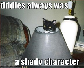 tiddles always was  a shady character