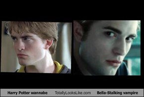 Harry Potter wannabe Totally Looks Like Bella-Stalking vampire